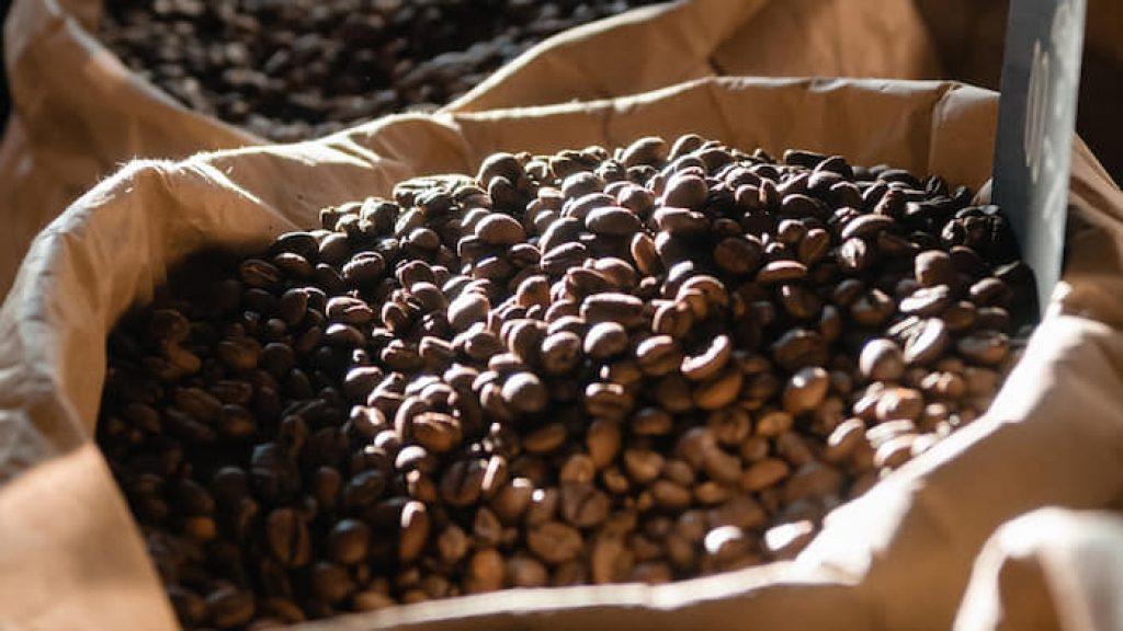 Cà phê Arabica trồng ở đâu?