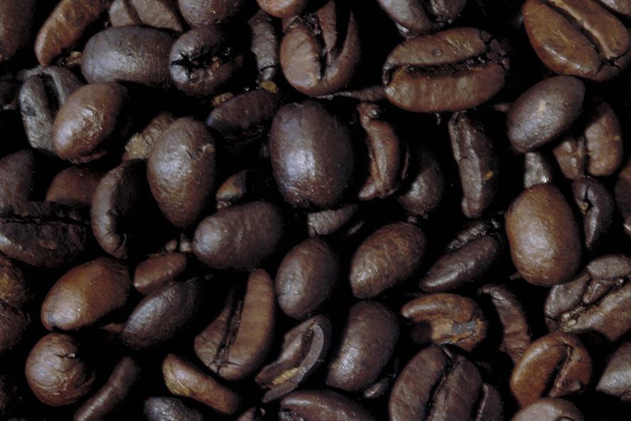 Cà phê Cherry (cà phê mít)