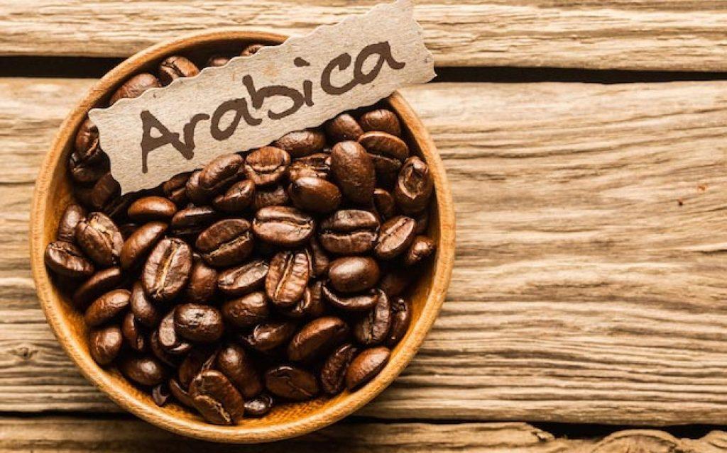 Tại sao cây cà phê tập trung chủ yếu ở Tây Nguyên?
