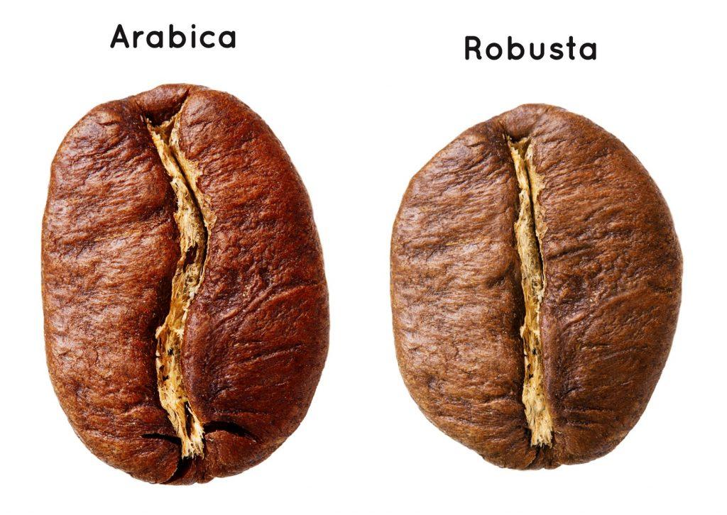 Tại sao pha cà phê bị chua?