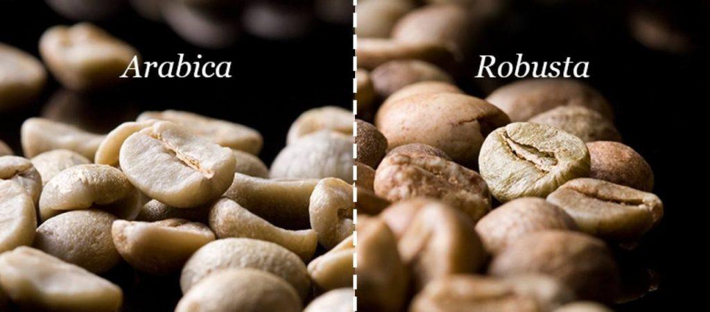 Đặc trưng của cà phê thương hạng